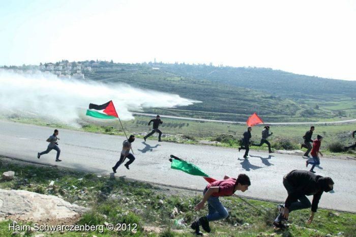 xmas nabi saleh 2012