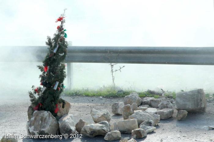 xmas tree nabi saleh 2012