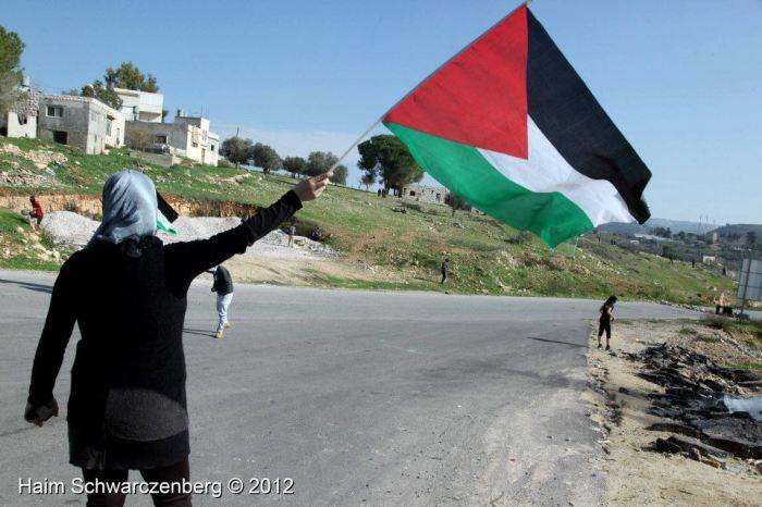 xmas woman flag 2012