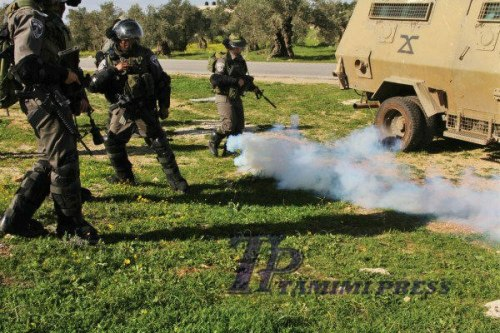 IOF teargasing themselves - tamimi press
