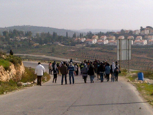 protestors on road -tweet palestine