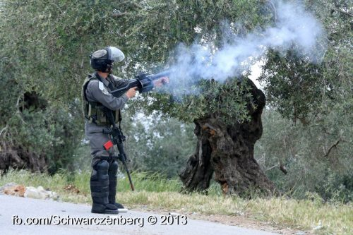 firing teargas - haim schw