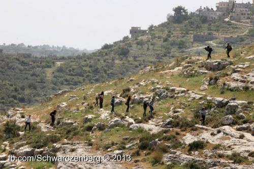 iof firing on protestors on mountain - haim schw