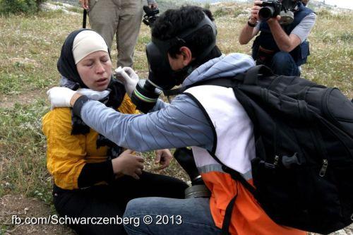 manal teargas - haim Schw