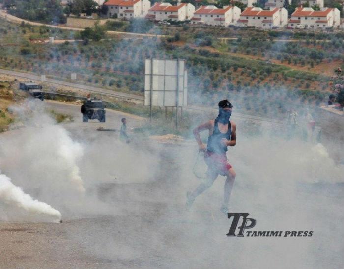 teargas - TP