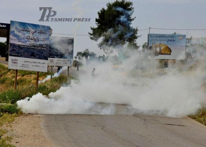 teargas2 - TP