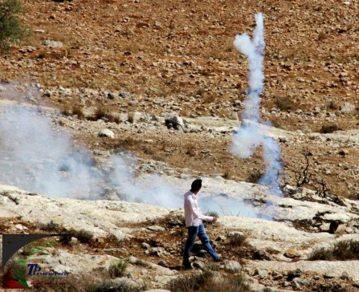 teargas mohammed