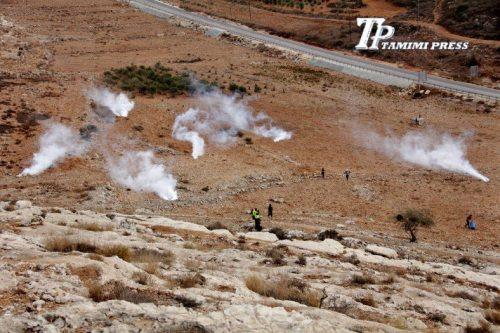 teargas in field