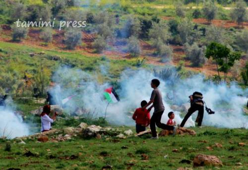 teargas and kids