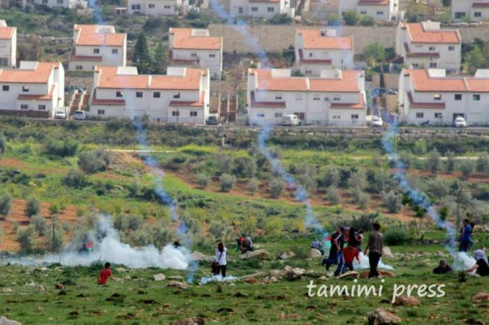 teargas and settlement