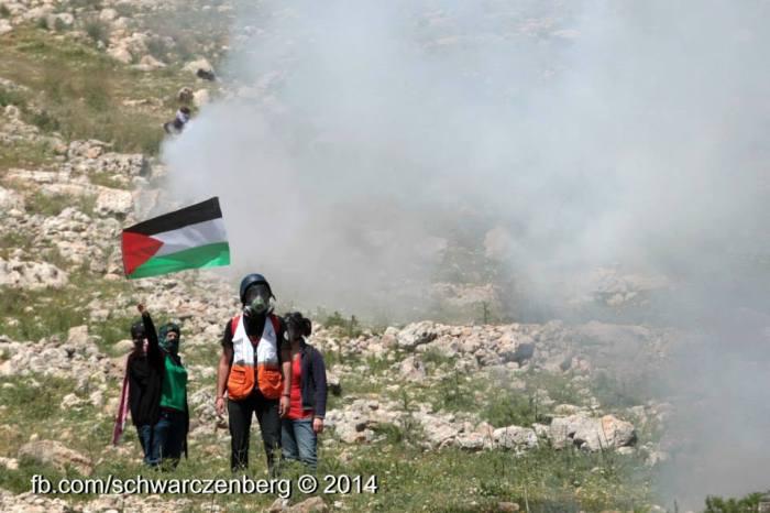 teargas and flag - haim