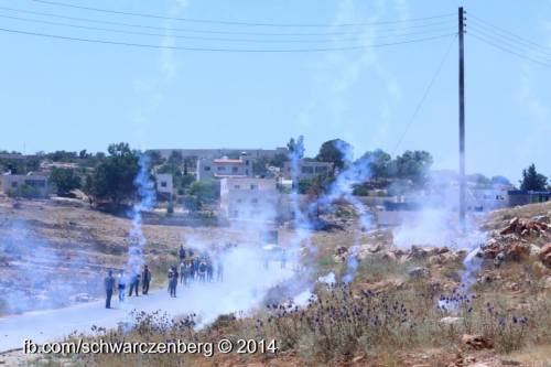 hill teargas