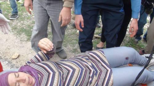 nariman injured tp